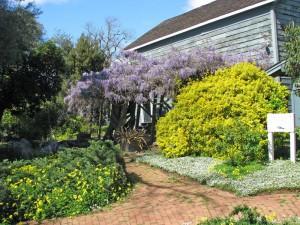 FHH-Garden